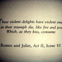 Le gioie violente hanno violenta fine